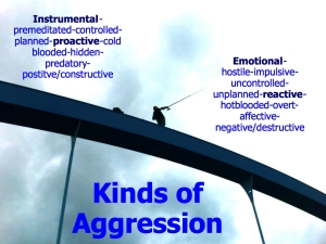 Kinds of aggression
